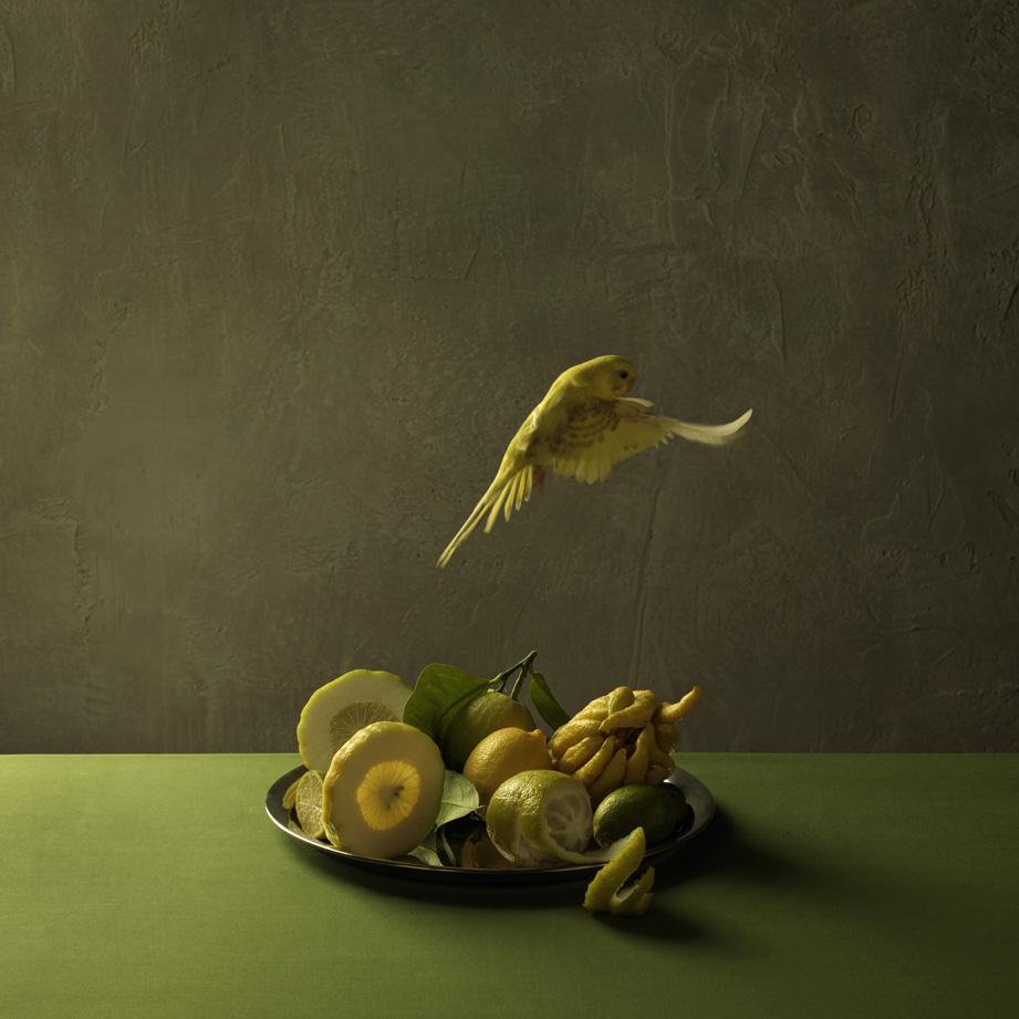 Marie Cécile Thijs - Food Portraits - Stijlmeisje